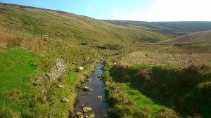 Salter's Brook